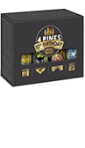 4 Pines Brewing 10th Bday Pack Bottle 500mL